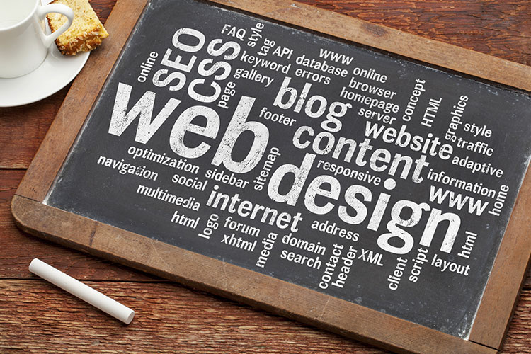 5 things to look for in web designer