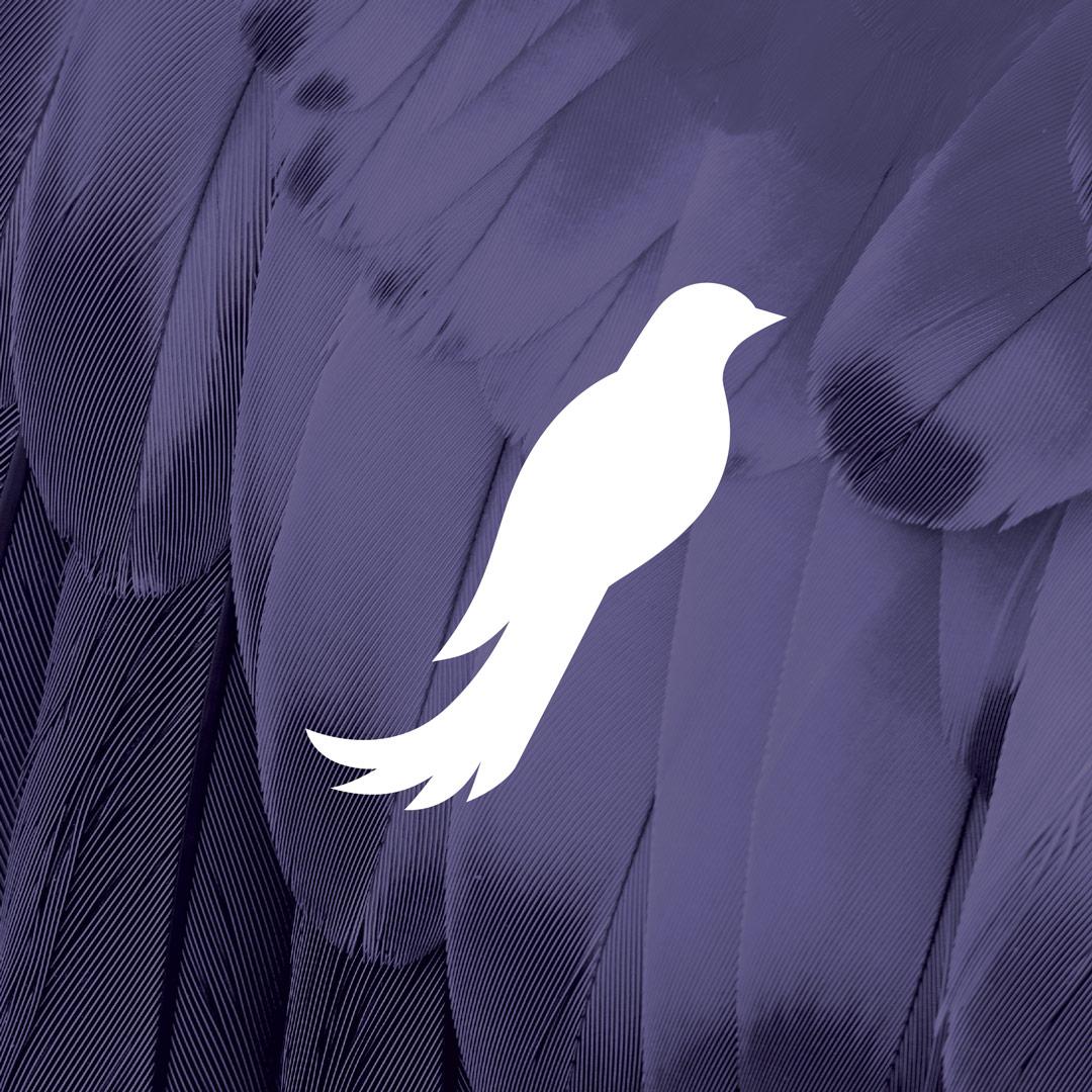nine10 logo design Frequency Hearing bird shape