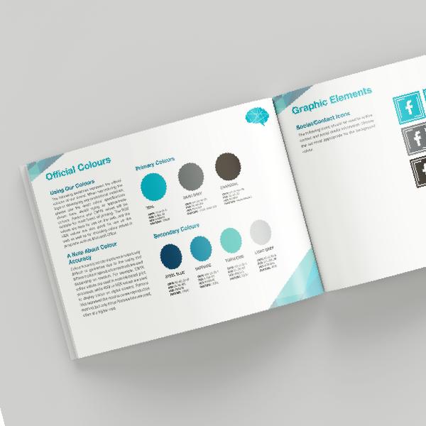 nine10 portfolio project brain solutions visual identity guide image