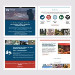 nine10 portfolio project ecofor gallery image 2