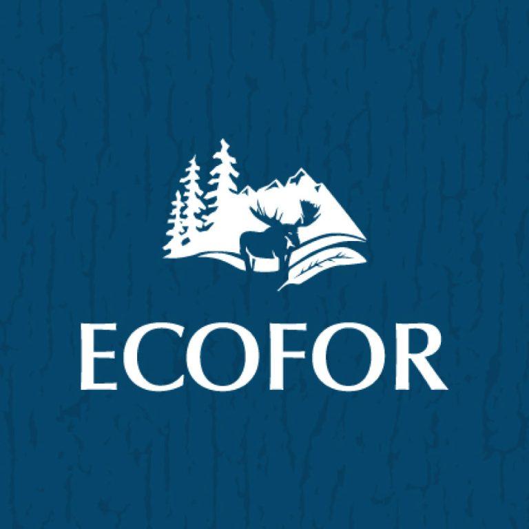 nine10 portfolio project ecofor gallery image 3